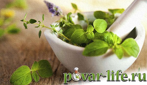 Базилик полезные свойства и противопоказания при сахарном диабете thumbnail