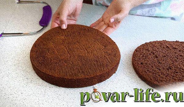 Рецепт торта «Килиманджаро» с фото